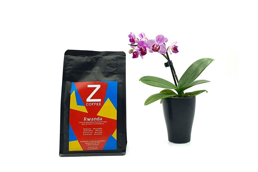 Cafea-de-specialitate-origine-Rwanda-Muyumbu 9×6